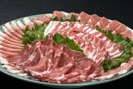 【ふるさと納税】小分けされてるから便利♪大分県産 豚詰め合わせ5種(約2kg)