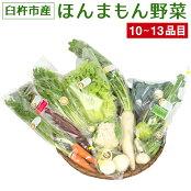 【ふるさと納税】化学合成農薬等不使用!安心安全な「ほんまもん野菜」を10品目前後お届け♪