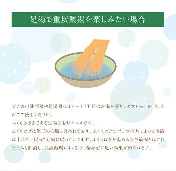 【ふるさと納税】薬用長湯ホットタブ100錠