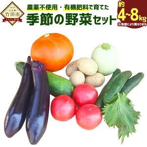 【ふるさと納税】農薬不使用・有機肥料で育てた、季節の野菜セット 約4〜8kg 野菜 無農薬 有機肥料 有機野菜 旬 九州産 国産 送料無料