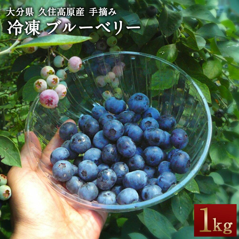 【ふるさと納税】冷凍 ブルーベリー 1kg 無農薬 手摘み 九州 大分県 久住高原産 新鮮 送料無料