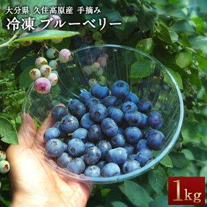 【ふるさと納税】冷凍 ブルーベリー 1kg 無農薬 手摘み 九州 大分県 久住高原産 新鮮 フルーツ 果物 送料無料