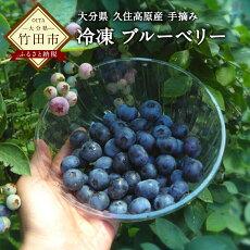 【ふるさと納税】無農薬手摘み冷凍ブルーベリー1kg九州大分県久住高原産新鮮
