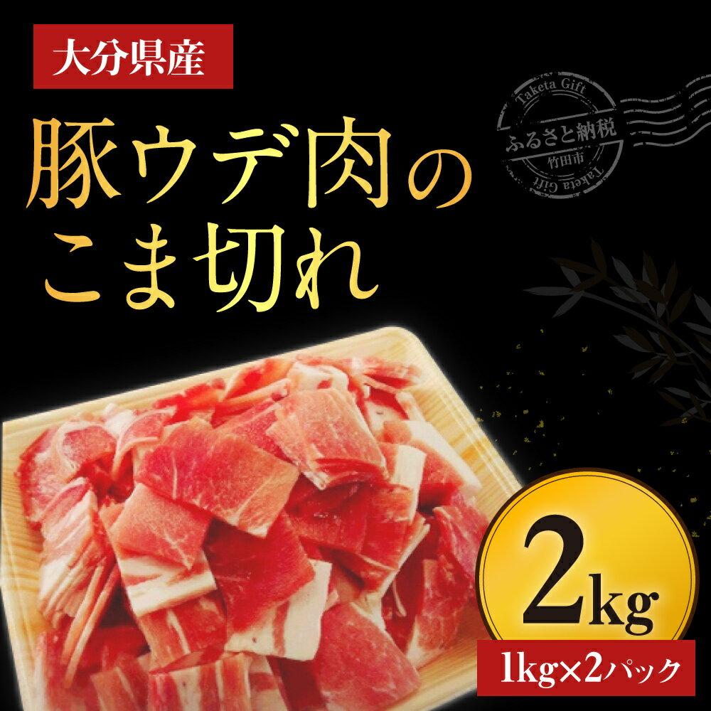 【ふるさと納税】大分県産豚ウデ肉のこま切れ2kg