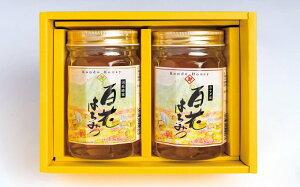 【ふるさと納税】国産百花蜜(はちみつ・450g×2)