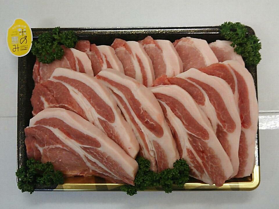 【ふるさと納税】中川さんちの米の恵み豚ローストンカツ【豊後高田市限定】