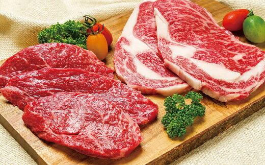 【ふるさと納税】「家族4人!大満足」豊後・米仕上牛ステーキ食べ比べ(600g)