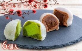 【ふるさと納税】生チョコ大福、抹茶生チョコ大福詰め合わせ(6個)