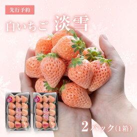 【ふるさと納税】【先行予約】白いちご「淡雪」・2パック入×1箱