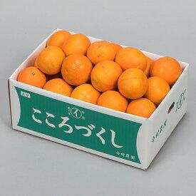 【ふるさと納税】【ご家庭用】今村農園のおひさまきらりん 約10kg 予約 果物 フルーツ<07-D0034>