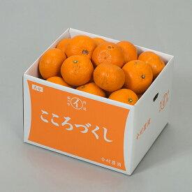 【ふるさと納税】【ご家庭用】今村農園の蔵姫くらひめ 約16kg(紅甘夏) 予約 果物 フルーツ<07-A5032>
