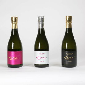 【ふるさと納税】ちえびじんレギュラーセット 日本酒<10-B8001>