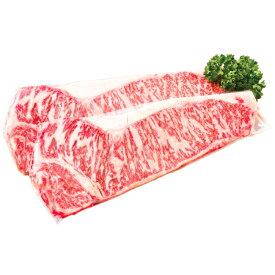 【ふるさと納税】B0081 黒毛和牛 霜降りサーロインステーキ(約170g×2)