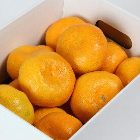【ふるさと納税】【ご家庭用】オレンジ農園のハウスみかん 約2.5kg ※7月中旬〜<37-A0042>