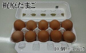 【ふるさと納税】梶原たまご30ヶ入り タマゴ 30個 卵 鶏卵 鶏 産地直送 国産 九州産 冷蔵 送料無料