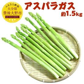 【ふるさと納税】アスパラガス 約1.5kg 野菜 アスパラ 新鮮 朝採れ 豊後大野市産 九州 送料無料