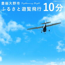【ふるさと納税】豊後大野市ふるさと遊覧飛行10分3人まで搭乗可能セスナ飛行機貸し切り観光