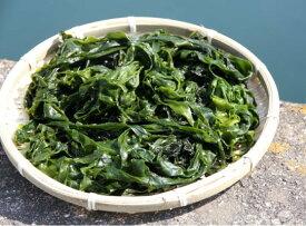 【ふるさと納税】風味が違います!国東天然わかめ(湯通し塩蔵1.12kg)