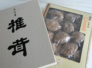 【ふるさと納税】国東しいたけ「香ちゃん(極上品300g)」※桐箱入り・通
