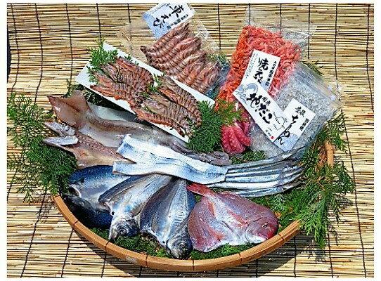 【ふるさと納税】磯武の国東海鮮プレミアムセット・通