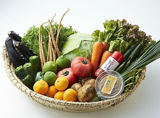 【ふるさと納税】10月から発送!くにさき旬野菜&フルーツ半年間定期便※計6回発送