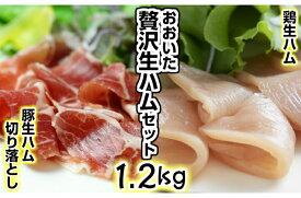 【ふるさと納税】おおいた自慢の豚・鶏の生ハム計1.2kg