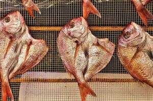 【ふるさと納税】天然鯛の一夜干し2.0kg(4尾〜5尾)