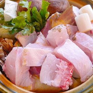 【ふるさと納税】クエの刺身と鍋セット(2人前)【大分水産】【1095868】