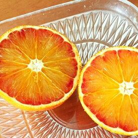 【ふるさと納税】【3月中旬より発送】ブラッドオレンジ(タロッコ) 5kg(28〜31玉) ダンボール箱入り【1134447】