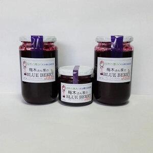 【ふるさと納税】梅木さん家のBLUE BERRY Jam