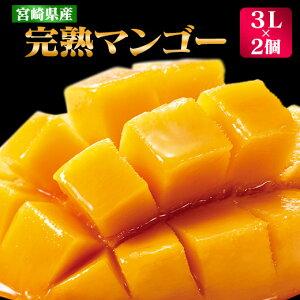 【ふるさと納税】宮崎県産完熟マンゴー(3L×2個)【K】