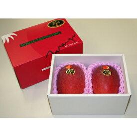【ふるさと納税】宮崎県産完熟マンゴー(太陽のタマゴ) 【約3kg】