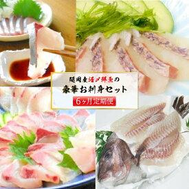 【ふるさと納税】延岡産活〆鮮魚の豪華お刺身(6ヶ月定期便)