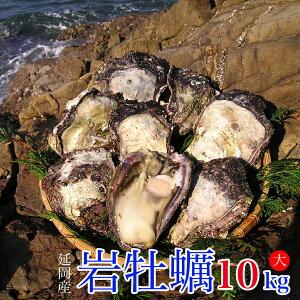 【ふるさと納税】延岡産天然岩牡蠣(生食用)10kg(大)(2020年4月から発送開始)
