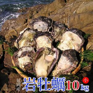 【ふるさと納税】延岡産天然岩牡蠣(生食用)10kg(小)(2020年4月から発送開始)
