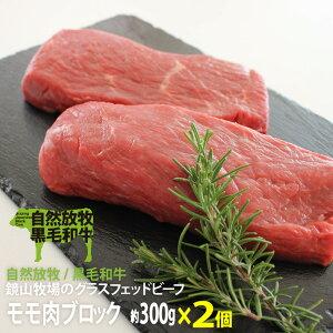 【ふるさと納税】B511 【鏡山牧場】自然放牧黒毛和牛モモブロック 600g(ローストビーフ用)