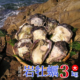 【ふるさと納税】延岡産天然岩牡蠣(生食用)3kg(大)(2019年4月から発送開始)