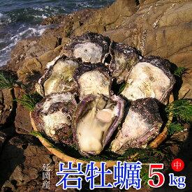 【ふるさと納税】延岡産天然岩牡蠣(生食用)5kg(中)(2019年4月から発送開始)