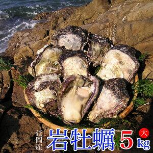 【ふるさと納税】延岡産天然岩牡蠣(生食用)5kg(大)(2020年4月から発送開始)