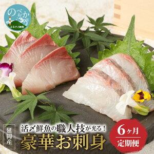 【ふるさと納税】定期便 6ヶ月 活〆 鮮魚の職人技が光る 豪華 お刺身 6回発送 魚介類 海鮮 食べ比べ