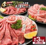 【ふるさと納税】《定期便》宮崎牛&県産豚★王道セット(合計3kg)