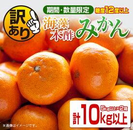 【ふるさと納税】訳あり《期間・数量限定》糖度12度以上!!海藻木酢みかん(計10kg以上)