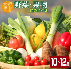 【ふるさと納税】朝採れ新鮮!!野菜・果物詰め合わせセット(10〜12品)