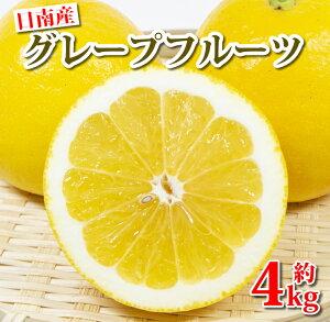 【ふるさと納税】日南産グレープフルーツ約4kg(9〜13玉)