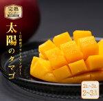 【ふるさと納税】完熟マンゴー「太陽のタマゴ」2〜3玉