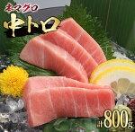 【ふるさと納税】本マグロ中トロ(計800g)