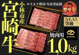 【ふるさと納税】【訳あり増量】A4等級以上小林市産宮崎牛おためし焼肉 1.0kg