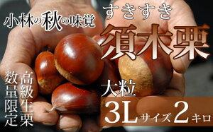 【ふるさと納税】【山奥のブランド栗】大粒すきすき須木栗 3L(2kg)
