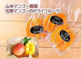 【ふるさと納税】まるごと贅沢!完熟マンゴーのドライフルーツ 20g×3袋(無添加・無加糖) [10-105]