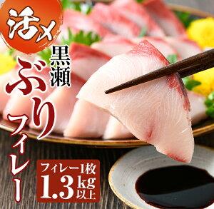 【ふるさと納税】活じめ!黒瀬ブリの生鮮ぶりフィレー(1.3kg) 刺身や煮物、焼き物等の料理に【AR-B1】